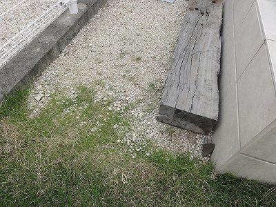 テラス横の砂利部分 芝生の侵食状況