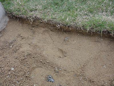 テラス部分 土を5cmほど除去