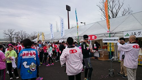 さが桜マラソン2016 おもてなしコーナー